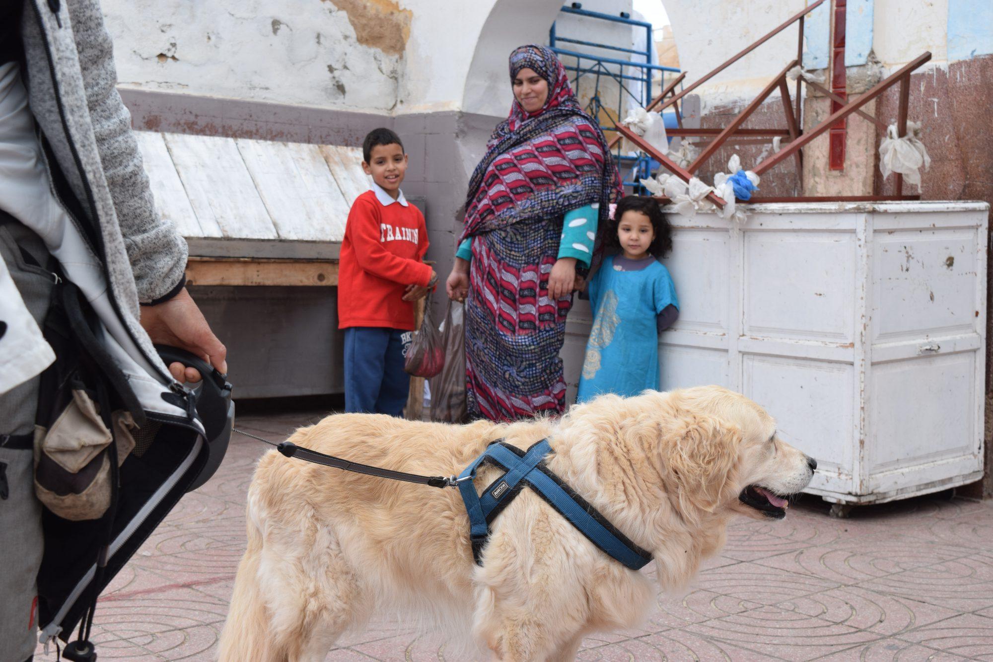 2016 Marokko 1366